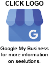Check seelutions out on Google My Business